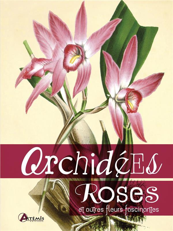 ORCHIDEES, ROSES ET AUTRES FLEURS FASCINANTES
