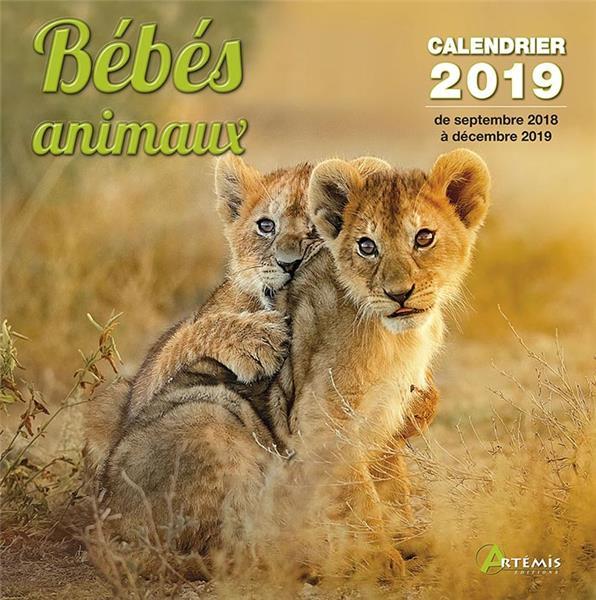 BEBES ANIMAUX (2019)