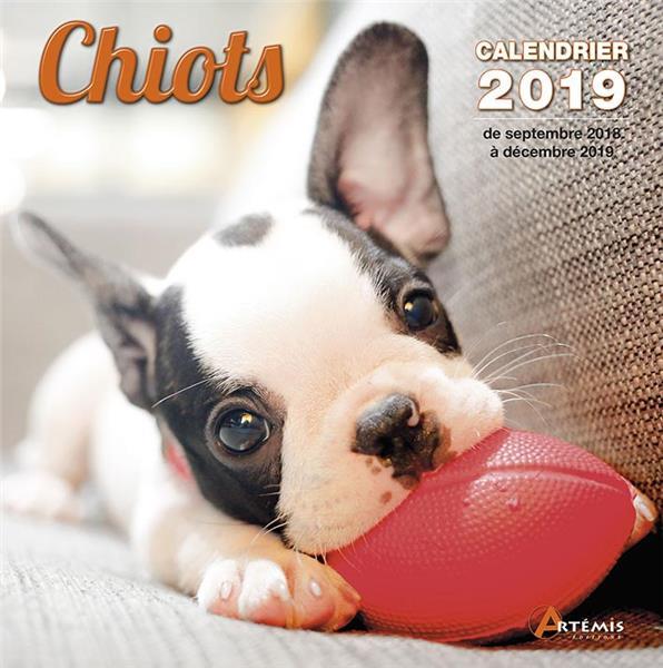 CHIOTS (2019)
