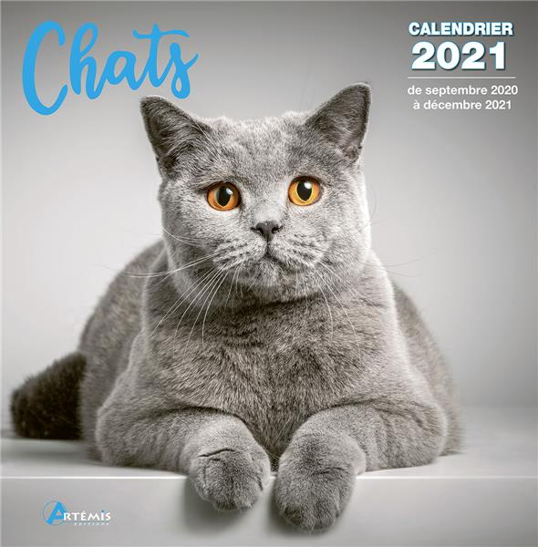 CALENDRIER CHATS 2021