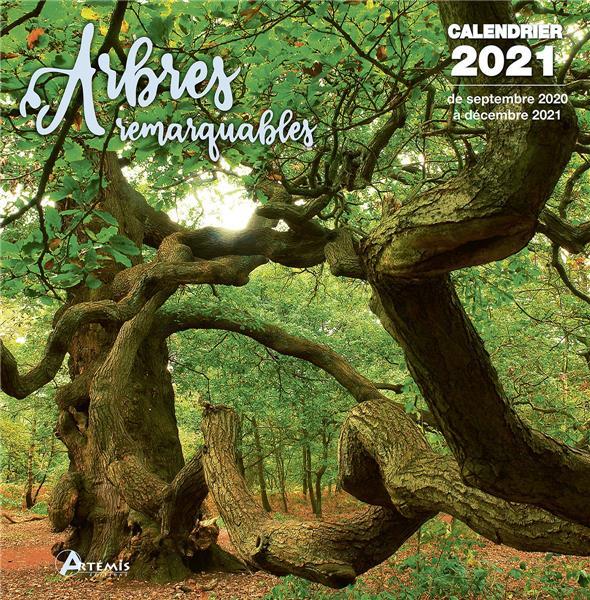 CALENDRIER ARBRES REMARQUABLES 2021
