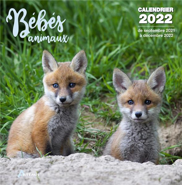 CALENDRIER BEBES ANIMAUX 2022