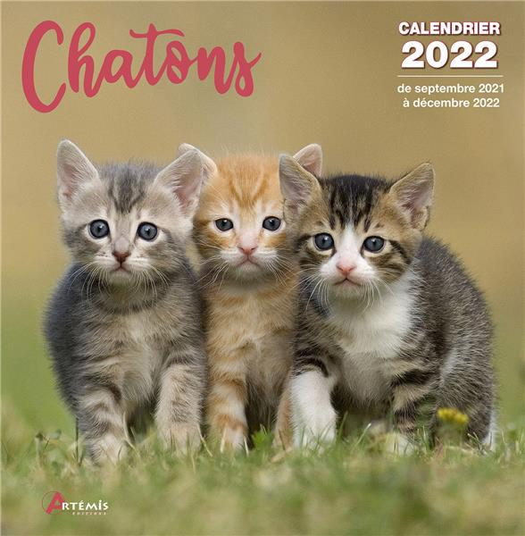 CALENDRIER CHATONS 2022