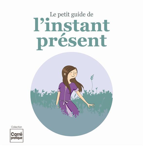 PETIT GUIDE DE L INSTANT PRESENT (LE)