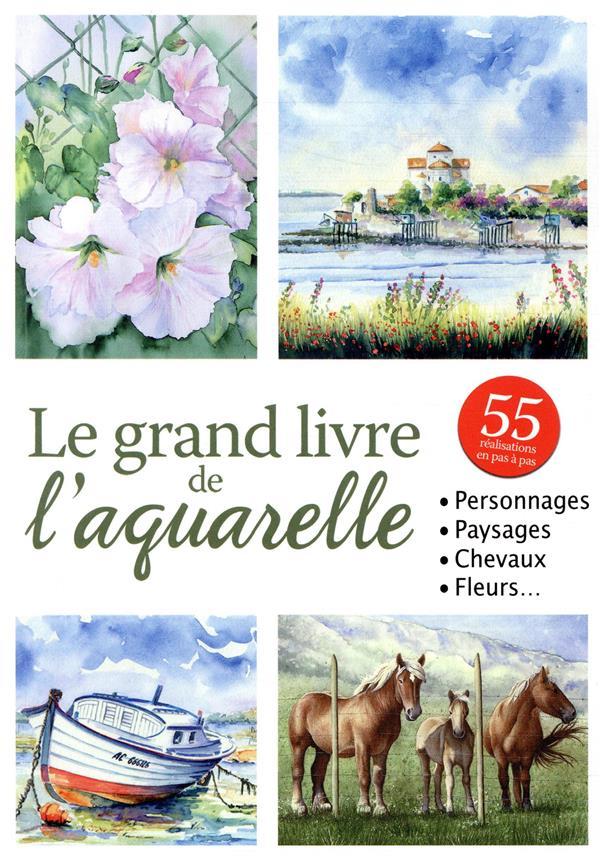 GRAND LIVRE DE L'AQUARELLE (LE)