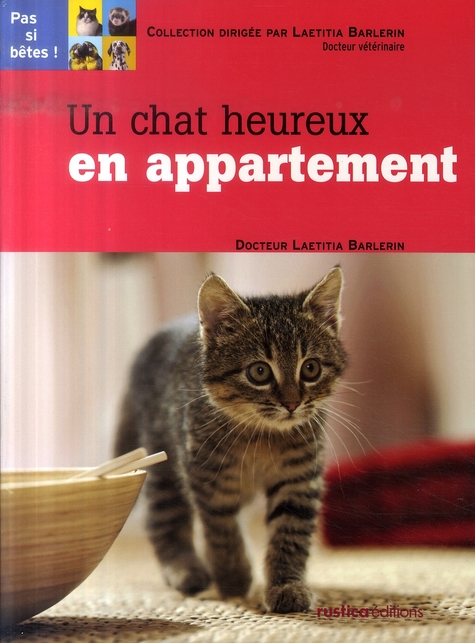 CHAT HEUREUX EN APPARTEMENT (UN)