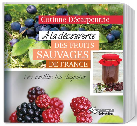 A LA DECOUVERTE DES FRUITS SAUVAGES DE FRANCE