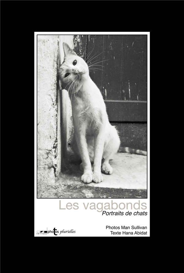 CHATS VAGABONDS : PORTRAITS DE CHATS