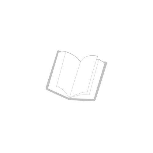 XL - WINSOR MCCAY, LITTLE NEMO-ANGLAIS