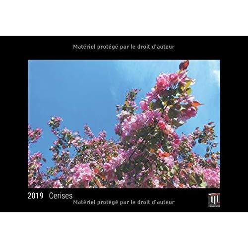 CERISES 2019 - EDITION NOIRE - CALENDRIER MURAL TIMOKRATES, CALENDRIER PHOTO, CALENDRIER PHOTO - DIN