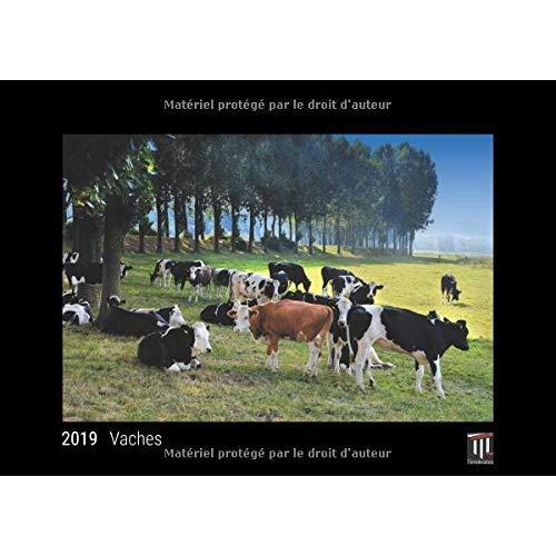 VACHES 2019 - EDITION NOIRE - CALENDRIER MURAL TIMOKRATES, CALENDRIER PHOTO, CALENDRIER PHOTO - DIN