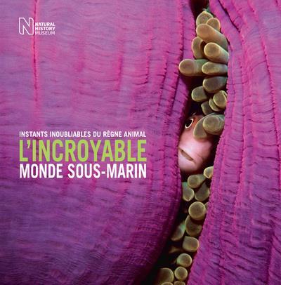 L'INCROYABLE MONDE SOUS-MARIN