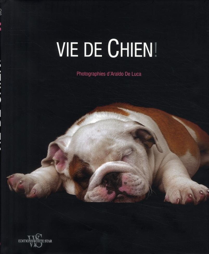 VIE DE CHIEN !