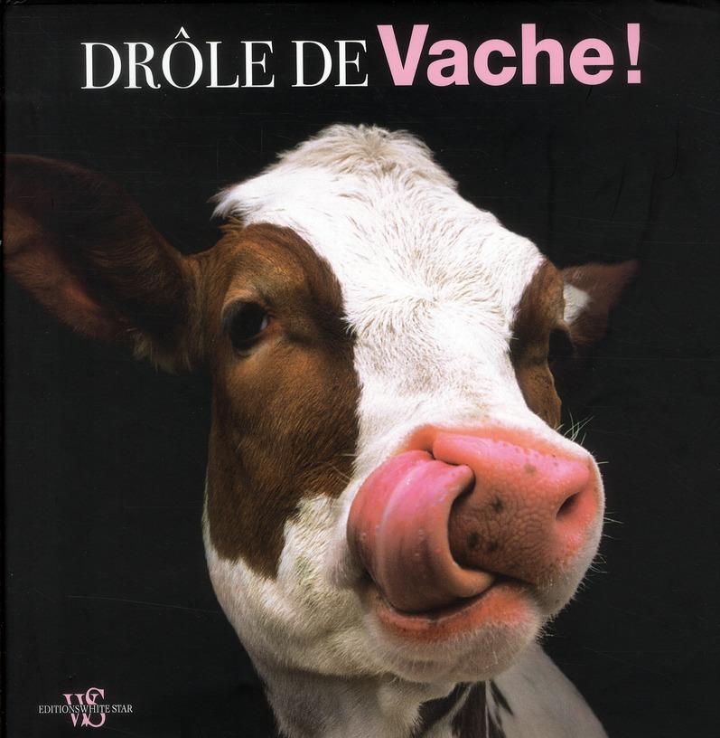 DROLE DE VACHE !