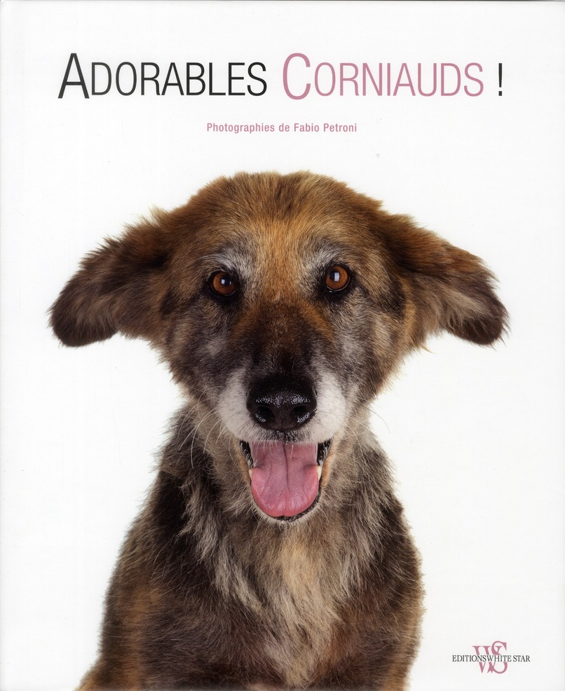 ADORABLES CORNIAUDS !