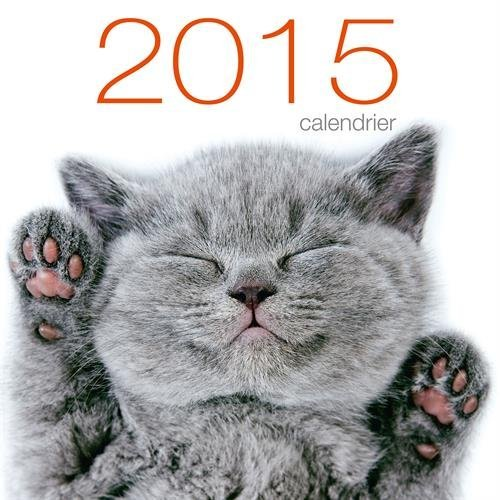 Calendrier mural chats 2015 collectif livres pratiques for Calendrier mural 2015