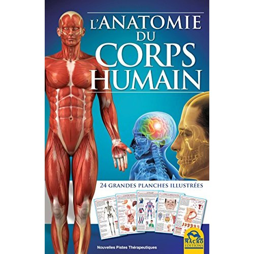 L ANATOMIE DU CORPS HUMAIN  24 GRANDES PLANCHES ILLUSTREES
