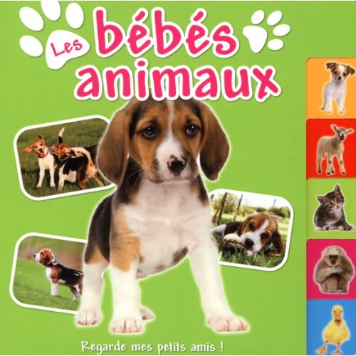 BEBES ANIMAUX (LES)