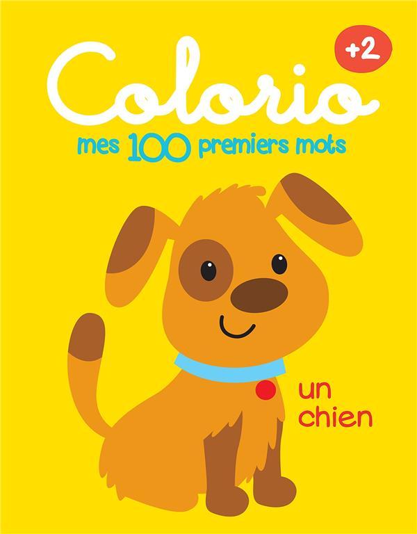 100 PREMIERS MOTS - CHIEN (MES) +2