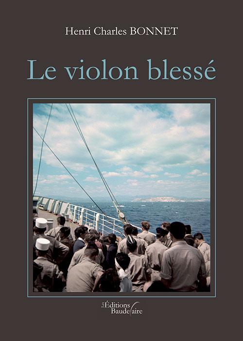 LE VIOLON BLESSE
