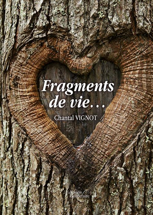 FRAGMENTS DE VIE...