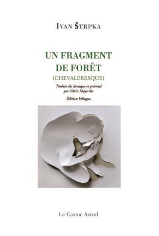 UN FRAGMENT DE FORET (CHEVALERESQUE)