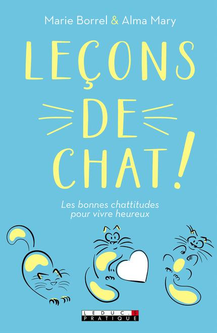 LECONS DE CHAT