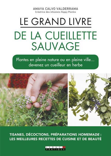 GRAND LIVRE DE LA CUEILLETTE SAUVAGE (LE)