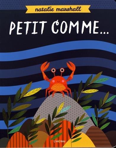 PETIT COMME ...