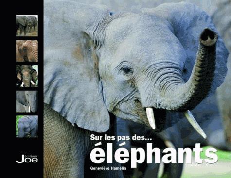 SUR LE PAS DES ELEPHANTS