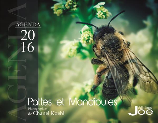 AGENDA 2016 PATTES ET MANDIBULES