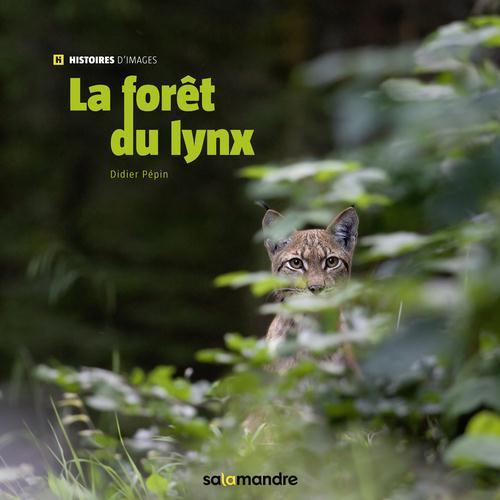 LA FORET DU LYNX