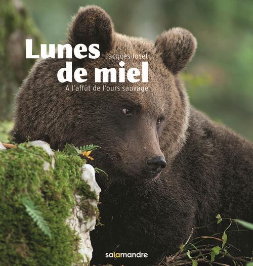 LUNES DE MIEL. A L'AFFUT DE L'OURS SAUVAGE