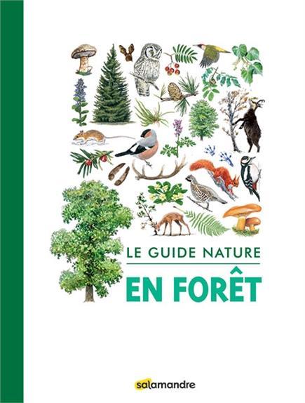 LE GUIDE NATURE EN FORET
