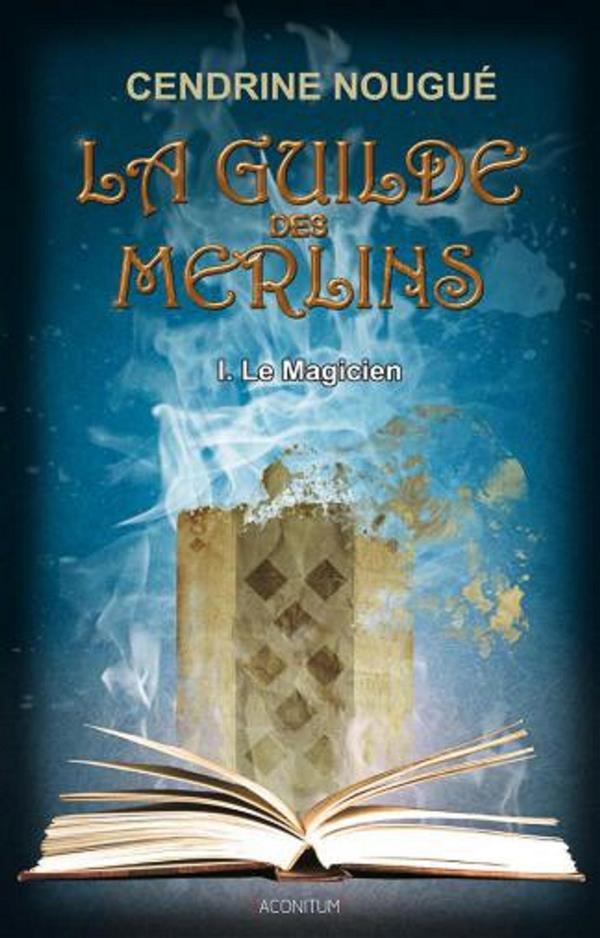 GUILDE DES MERLINS T1 (LA) - LE MAGICIEN