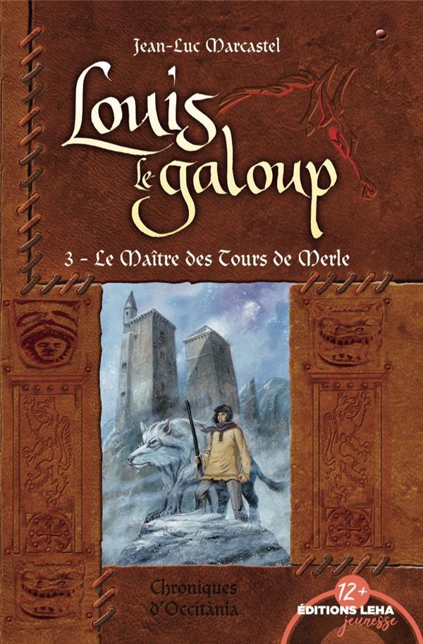 LES MAITRES DES TOURS DE MERLE, LOUIS LE GALOUP, TOME 3