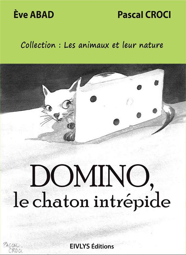 DOMINO, LE CHATON INTREPIDE