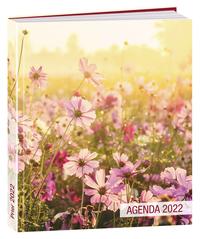 AGENDA PRIER 2022