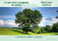 """CALENDRIER 2021 : """"CE QUE NOUS ENSEIGNENT LES ARBRES"""""""