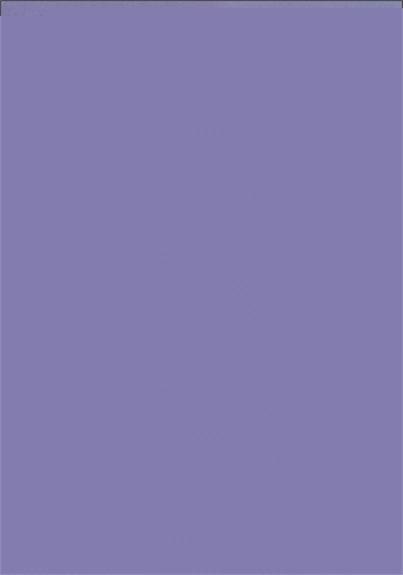 PLANCHE AURICULOTHERAPIE - 17X24 - LOT DE 5