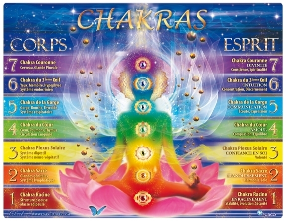 PLANCHE DES 7 CHAKRAS
