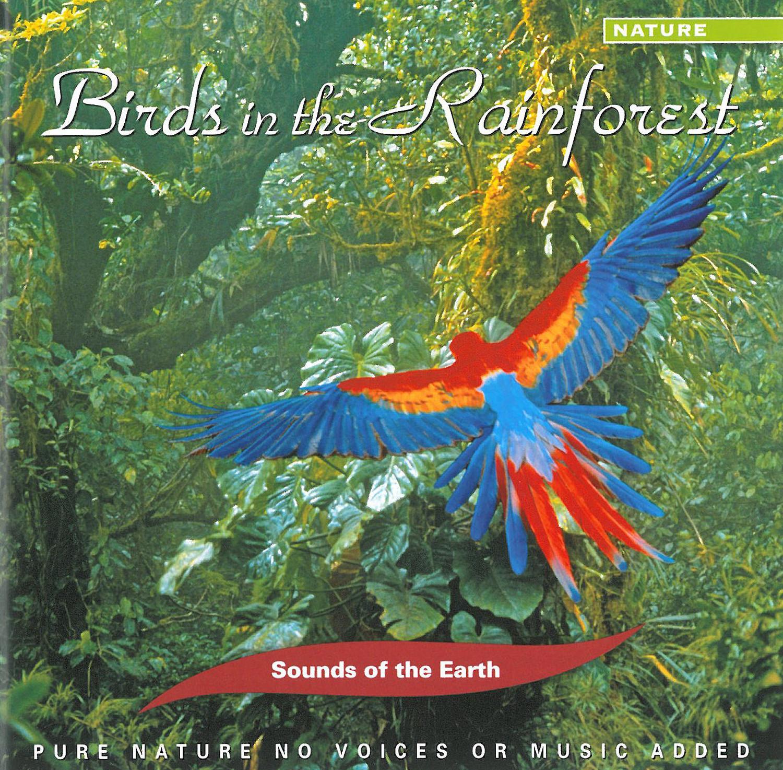 BIRDS IN THE RAINFOREST - AUDIO