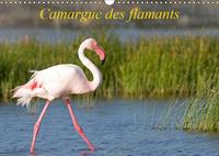 CAMARGUE DES FLAMANTS (CALENDRIER MURAL 2019 DIN A3 HORIZONTAL) - LA CAMARGUE, SES FLAMANTS ET SES C