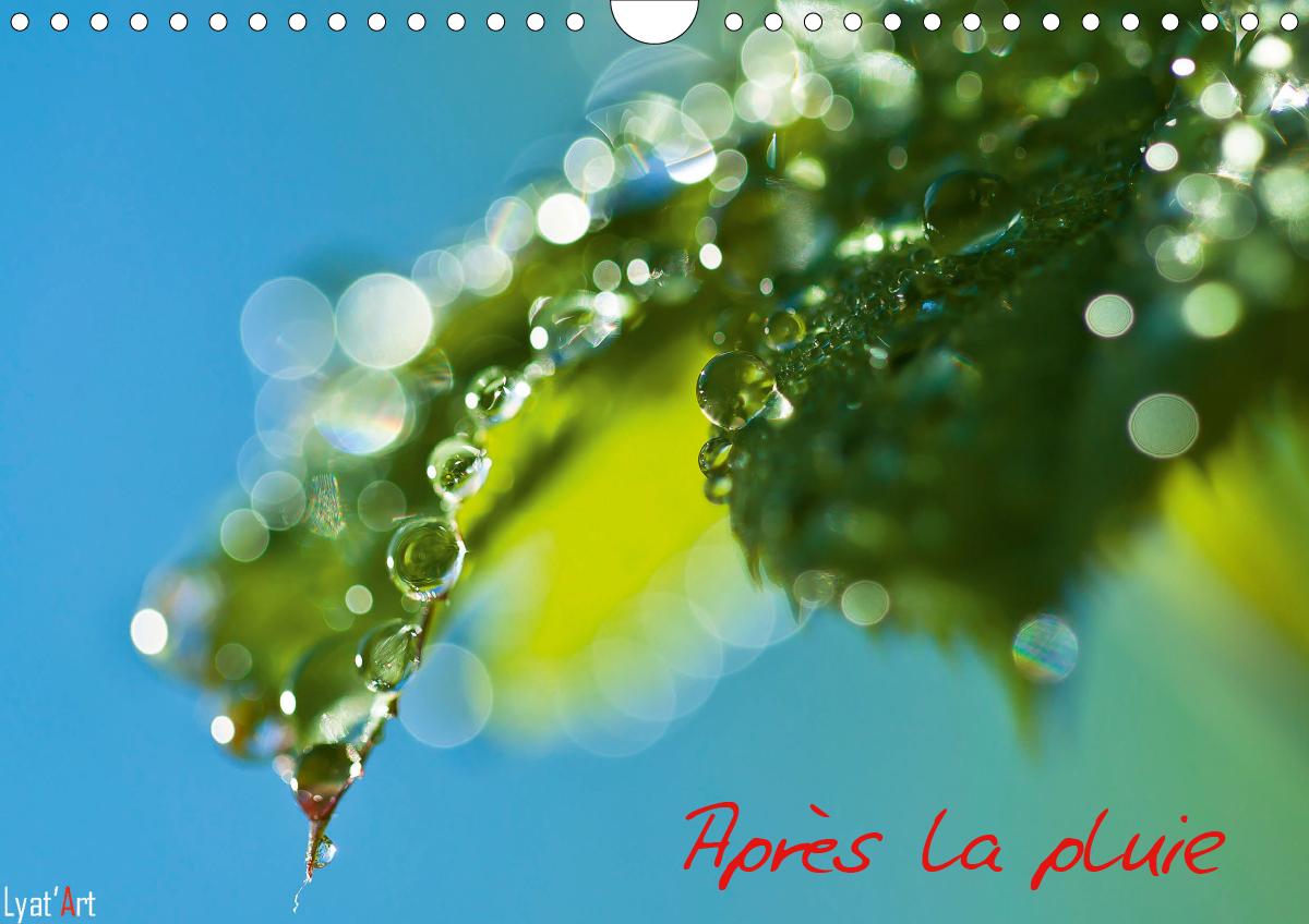 APRES LA PLUIE (CALENDRIER MURAL 2020 DIN A4 HORIZONTAL) - CALENDRIER MURAL 14 PAGES SUR LE THEME DE