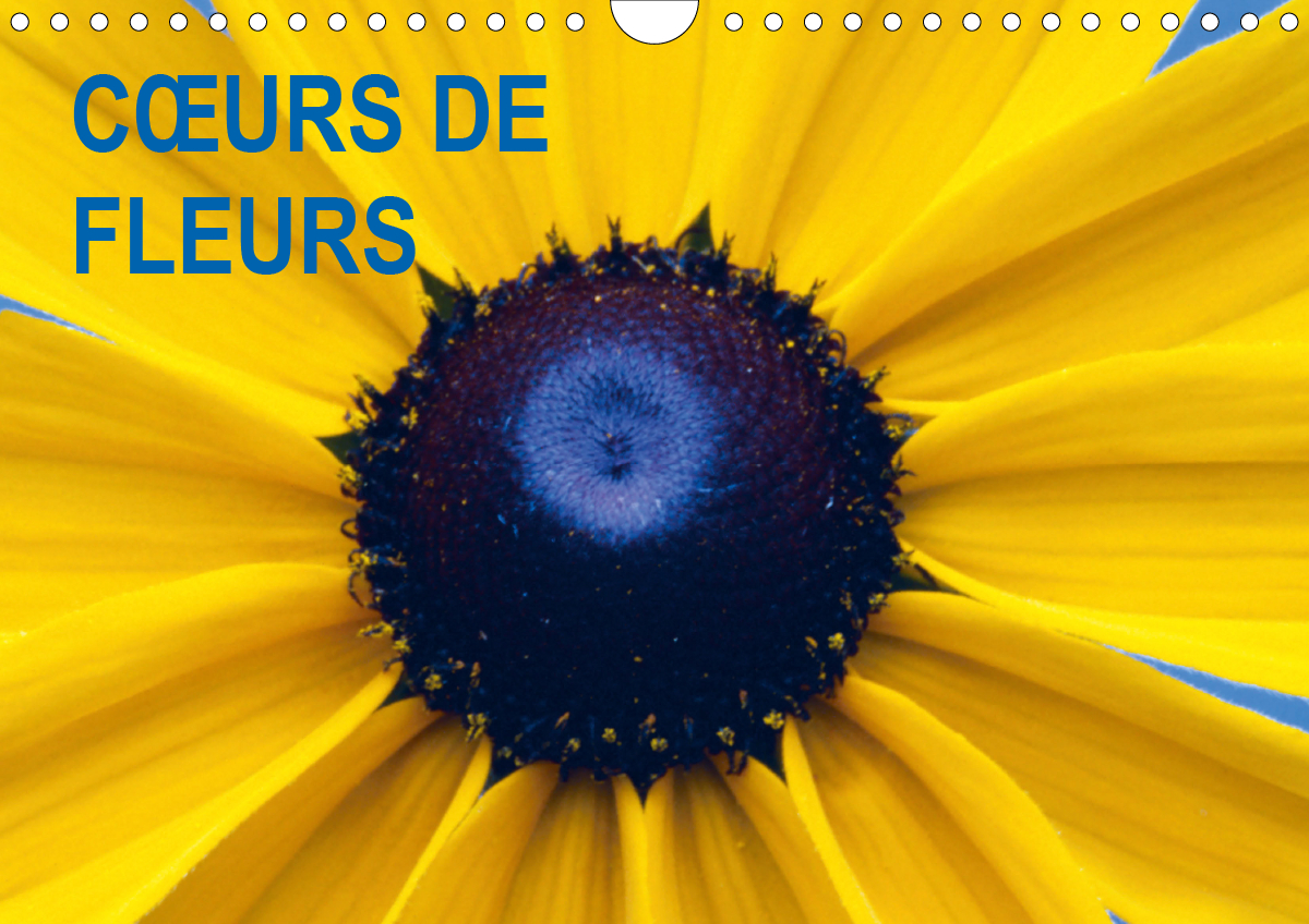 C URS DE FLEURS CALENDRIER MURAL 2020 DIN A4 HORIZONTAL - PLAISIR D UNE ANNEE FLEURIE CA