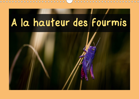 A LA HAUTEUR DES FOURMIS (CALENDRIER MURAL 2020 DIN A3 HORIZONTAL) - CALENDRIER MENSUEL, 14 PAGES AV
