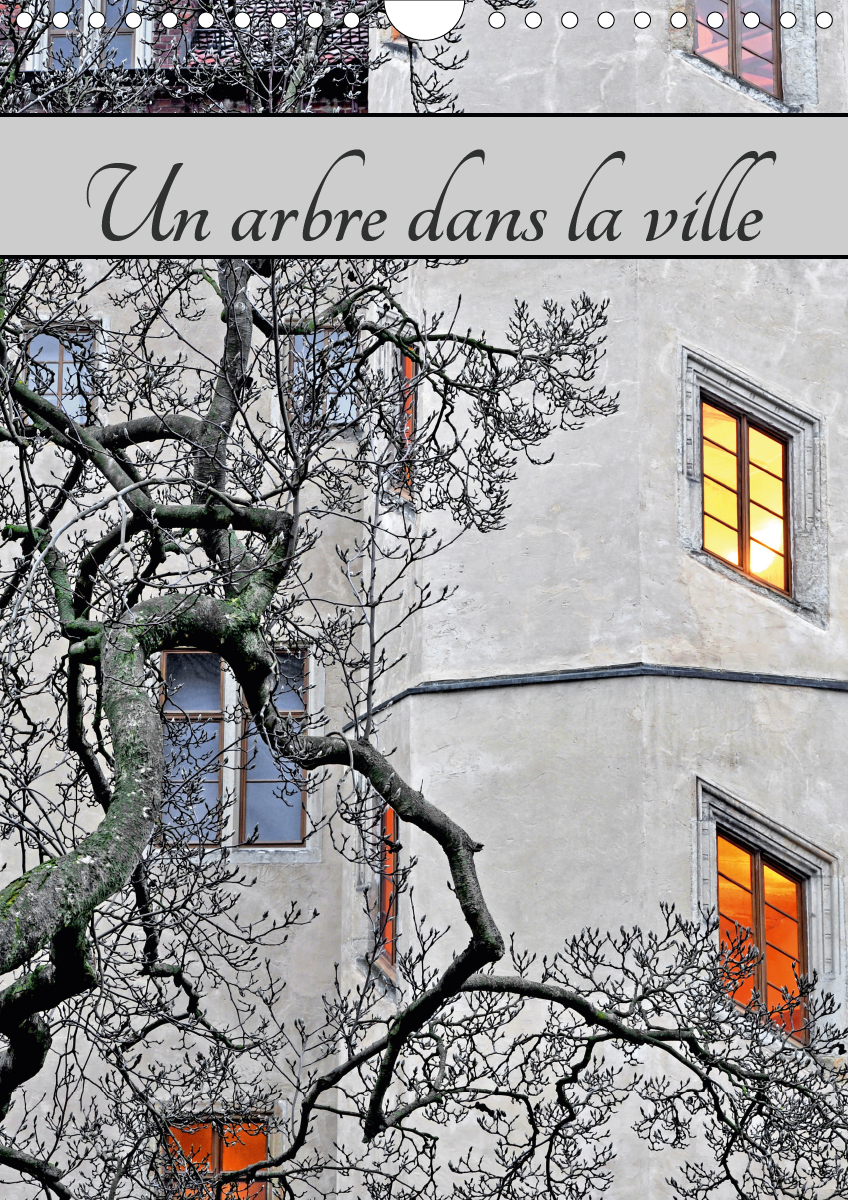 UN ARBRE DANS LA VILLE (CALENDRIER MURAL 2020 DIN A4 VERTICAL) - PAYSAGE URBAIN AVEC LA PRESENCE D'A