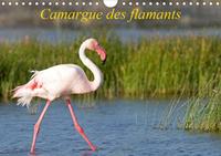 CAMARGUE DES FLAMANTS (CALENDRIER MURAL 2020 DIN A4 HORIZONTAL) - LA CAMARGUE, SES FLAMANTS ET SES C