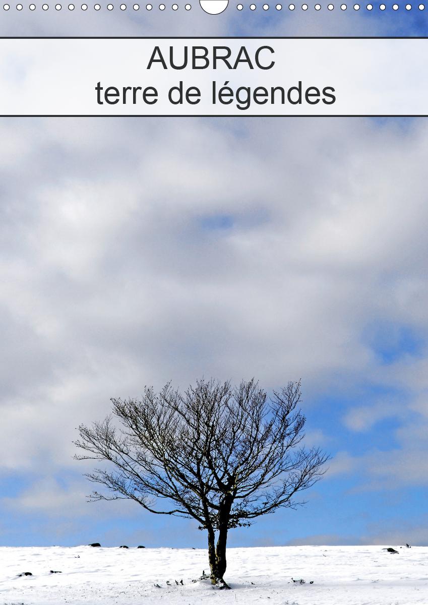 AUBRAC TERRE DE LEGENDES (CALENDRIER MURAL 2020 DIN A3 VERTICAL) - LE PLATEAU DE L'AUBRAC AU SUD DU