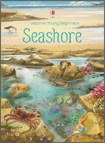 YOUNG BEGINNERS - SEASHORE